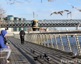 256-liffey-boardwalk-dublin