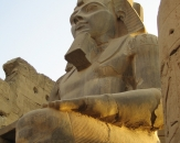 018-statue-of-ramses-ii-ramses-at-luxor-temple