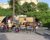 159-carriage-with-a-horse