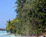 061-kuramathi-island-resort-maldives