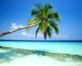 089-tropical-island-maldives
