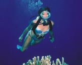 013-Diving-in-Egypt