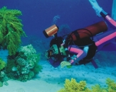 054-Red-sea-Egypt