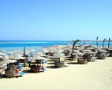 004-Sea-Star-Beau-Rivage-Beach-Hurghada-Egypt