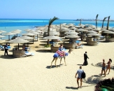 011-Sea-Star-Beau-Rivage-Beach-Hurghada-Egypt
