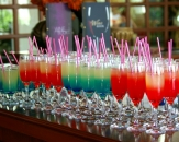 092-Susesi-De-Luxe-Resort-Spa-and-Golf-Hotel-Welcome-Drinks-Turkey